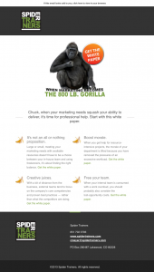 Spider Trainers' 800 lb. Gorilla eBook email image