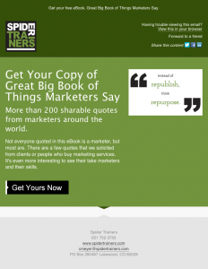 Spider Trainers' Great Big Book of Things Marketers Say eBook blast email image